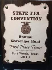 FFA Trophy